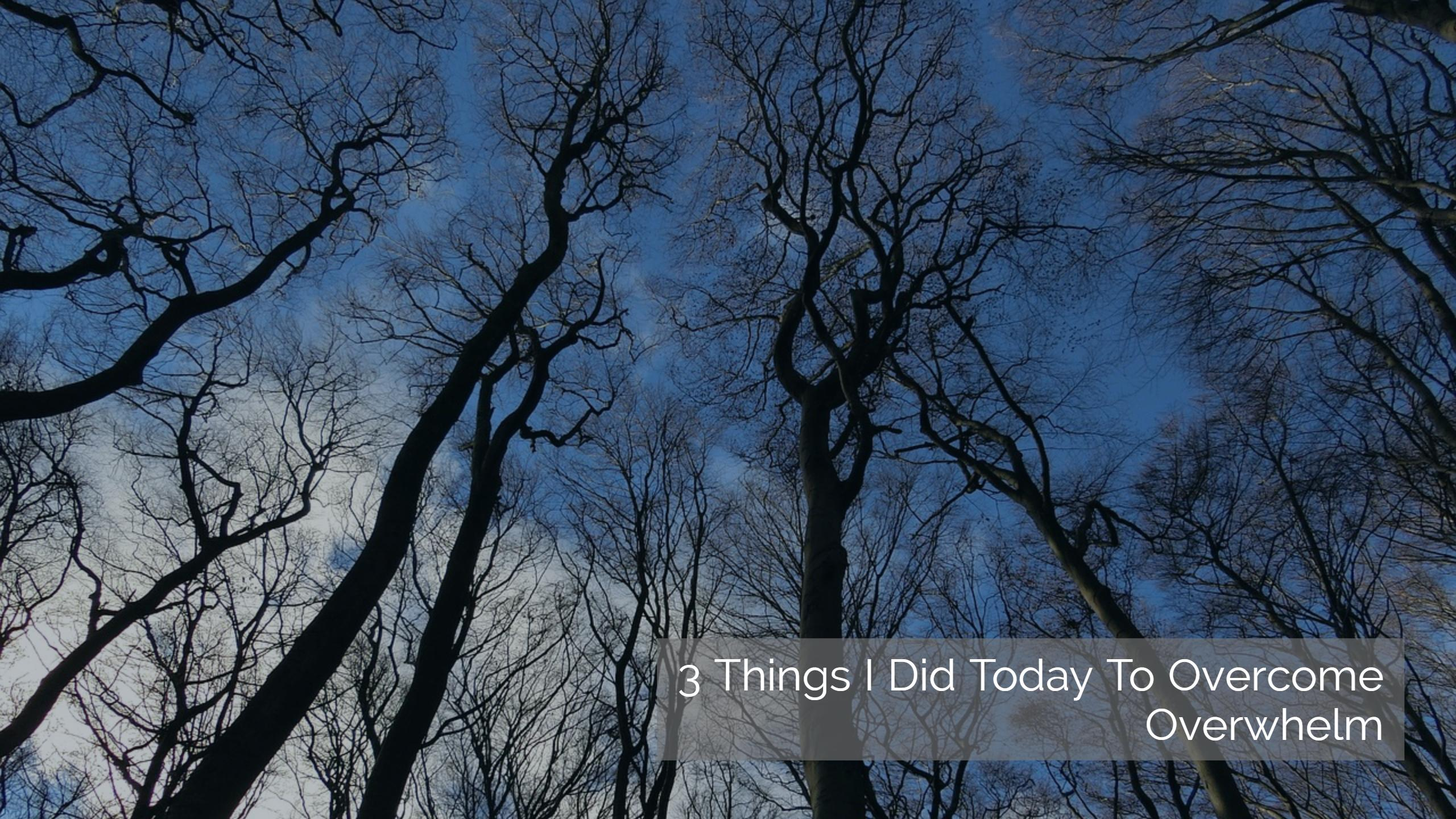 3 Things I Did Today To Overcome Overwhelm